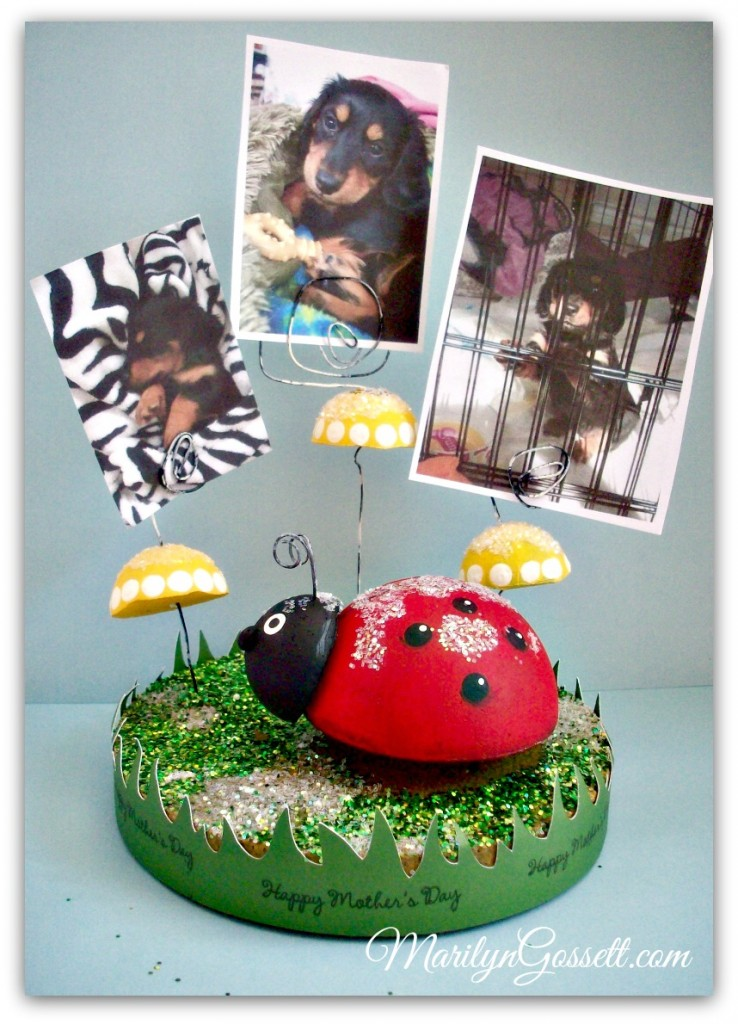 Smoothfoam ladybug photo holder
