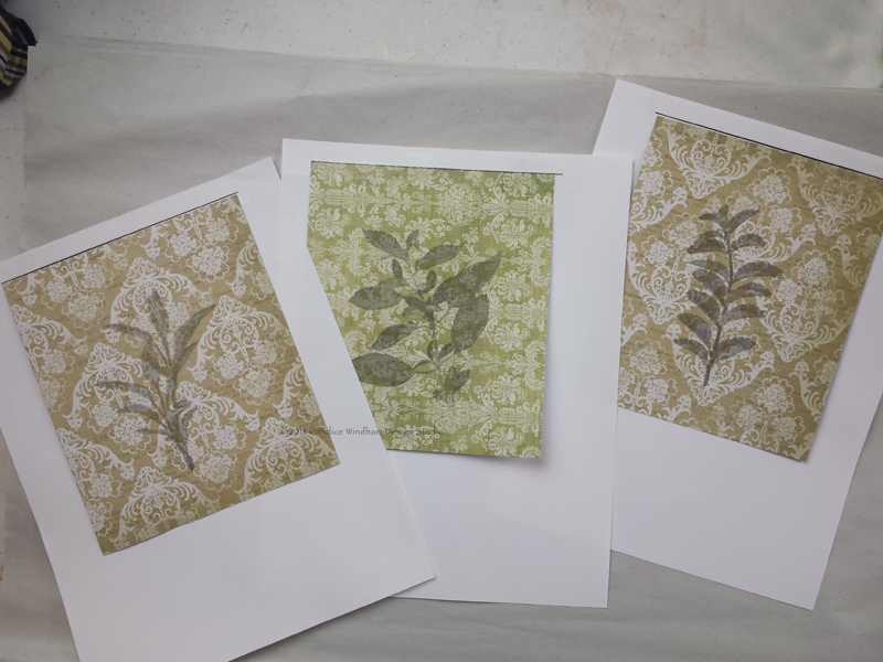 herb images printed on patterned cardstock
